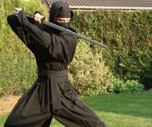 Rompicapo di Guerriero ninja e la lotta con la katana