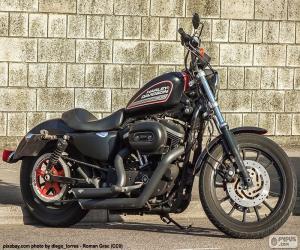 Rompicapo di Harley-Davidson 883R 2008