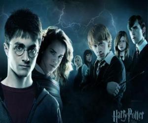 Rompicapo di Harry Potter con i suoi amici