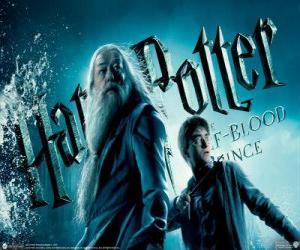 Rompicapo di Harry Potter e il principe mezzosangue