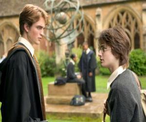 Rompicapo di Harry Potter e il suo amico Cedric Diggory