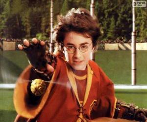 Rompicapo di Harry Potter lanciando una palla