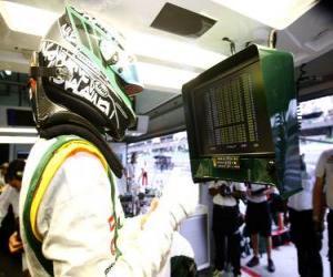Rompicapo di Heikki Kovalainen - Lotus - Sepang 2010
