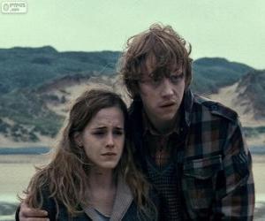 Rompicapo di Hermione Granger e Ron Weasle