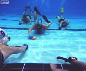 Rompicapo di Hockey subacqueo
