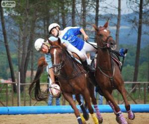 Rompicapo di Horseball