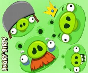Rompicapo di I maiali da Angry Birds