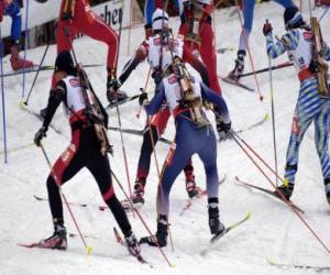 Rompicapo di Il biathlon in uno sport invernale che combina cross-sci paese con tiro al bersaglio.
