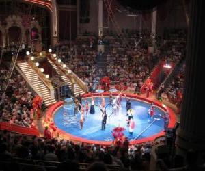 Rompicapo di Il circo