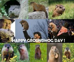 Rompicapo di Il giorno della marmotta è una festa che si celebra negli Stati Uniti e in Canada il 2 febbraio