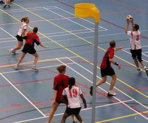 Rompicapo di Il korfbal, chiamato anche balonkorf, è uno sport di squadra ha giocato tra due squadre che cercano di introdurre una palla in un cesto.