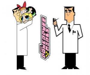 Rompicapo di Il professore Utonium è il creatore di Le Superchicche