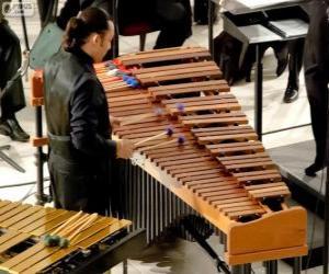Rompicapo di Il vibrafono è uno strumento musicale a percussione