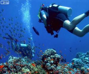 Rompicapo di Immersioni subacquee