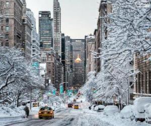 Rompicapo di Inverno a New York