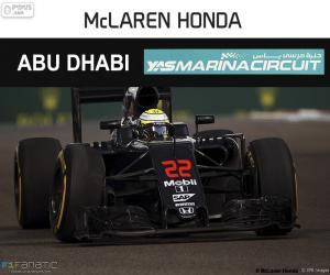 Rompicapo di J. Button, GP Abu Dhabi 2016