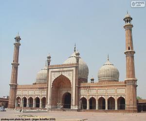 Rompicapo di Jama Masjid, India
