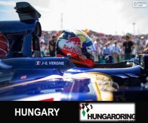 Rompicapo di Jean-Eric Vergne - Toro Rosso - Hungaroring, 2013