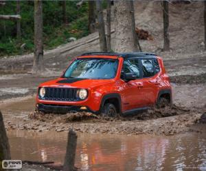 Rompicapo di Jeep Renegade 2015