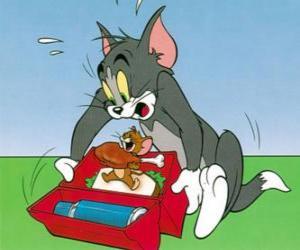 Rompicapo di Jerry si nutre di pic-nic Tom
