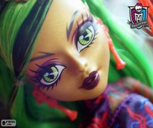 Rompicapo di Jinafire Long, Monster High