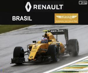 Rompicapo di Jolyon Palmer, GP Brasile 2016