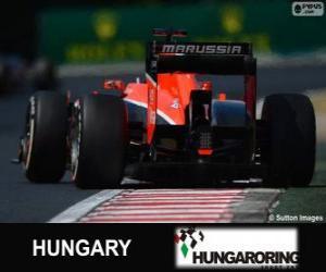 Rompicapo di Jules Bianchi - Marussia - Hungaroring, 2013