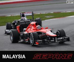 Rompicapo di Jules Bianchi - Marussia - Sepang 2013