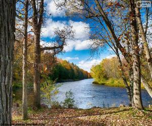 Rompicapo di Jumbo River, Stati Uniti d'America
