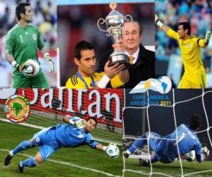 Rompicapo di Justo Villar miglior portiere Copa America 2011