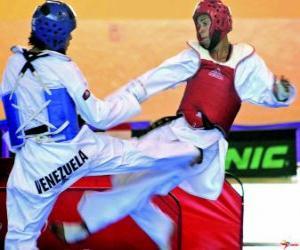 Rompicapo di Karate - Due karatecas na pratica