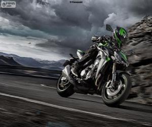 Rompicapo di Kawasaki Z1000 2014