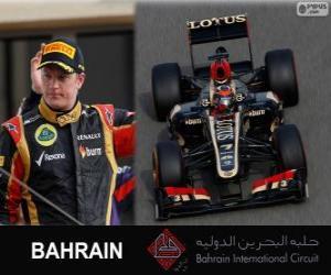 Rompicapo di Kimi Räikkönen - Lotus - Gran Premio Bahrain 2013, 2º classificato