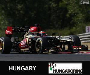 Rompicapo di Kimi Räikkönen - Lotus - Gran Premio d'Ungheria 2013, 2º classificato