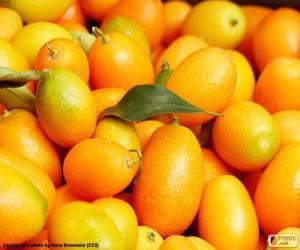 Rompicapo di Kumquat