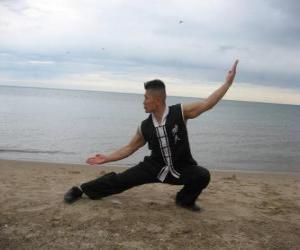 Rompicapo di Kung Fu