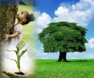 Rompicapo di L'Arbor Day si svolge il Venerdì scorso nel mese di aprile negli Stati Uniti. In altri paesi si celebra in date diverse durante la stagione della semina adatto