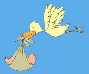 Rompicapo di La cicogna porta un bambino. La cicogna e il bambino