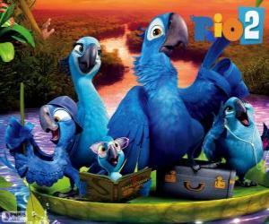 Rompicapo di La famiglia di Blu in Amazzonia