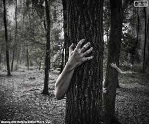 Rompicapo di La foresta di orrore