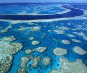 Rompicapo di La Grande Barriera Corallina, le barriere coralline in tutto il mondo più grande. Australia.