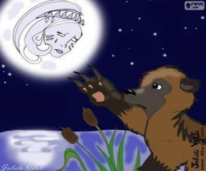Rompicapo di La luna e l'orso