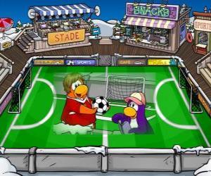 Rompicapo di La partita di calcio dil Club Penguin