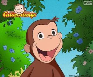 Rompicapo di La scimmia George