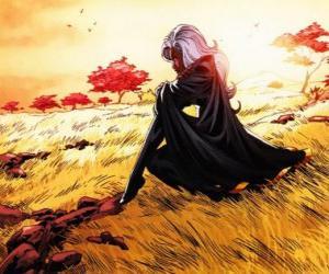 Rompicapo di La super-eroina Tempesta è un membro degli X-Men, anche conosciuto come la Pantera Nera