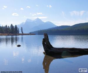 Rompicapo di Lago Maligne, Canada