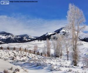 Rompicapo di Lamar Valley, parco nazionale di Yellowstone, Wyoming, Stati Uniti