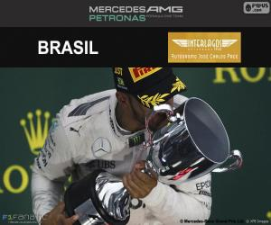 Rompicapo di Lewis Hamilton, GP Brasile 2016