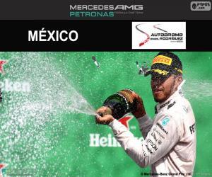 Rompicapo di Lewis Hamilton, GP Messico 2016