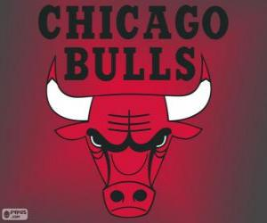 Rompicapo di Logo Chicago Bulls, squadra NBA. Central Division, Eastern Conference